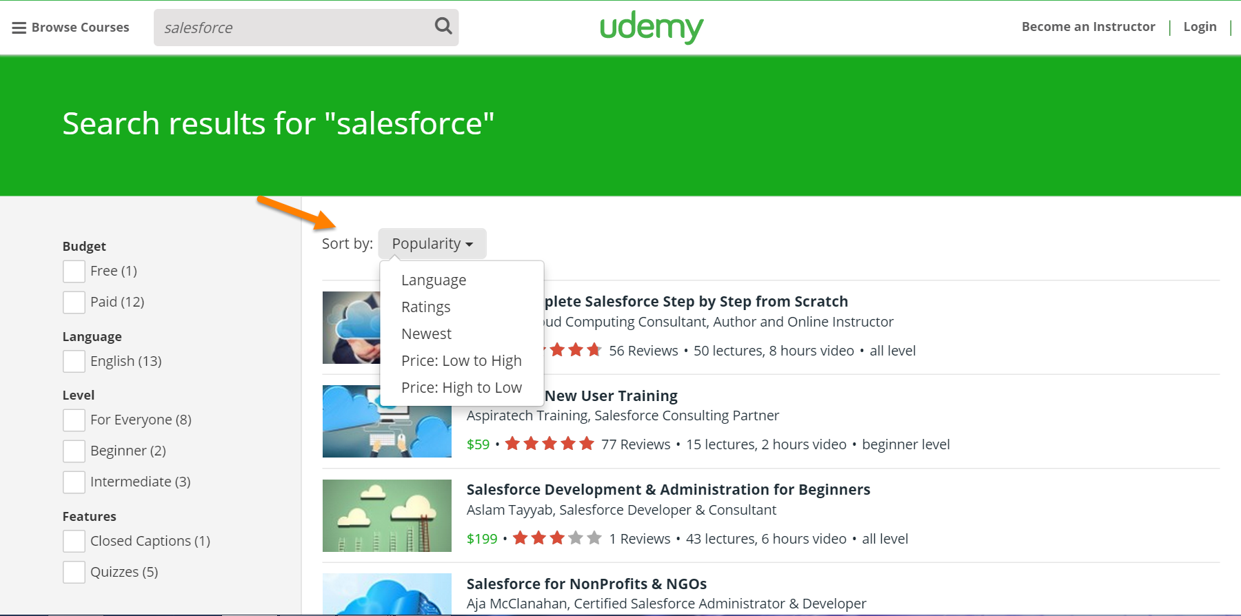 Udemy Salesforce Search
